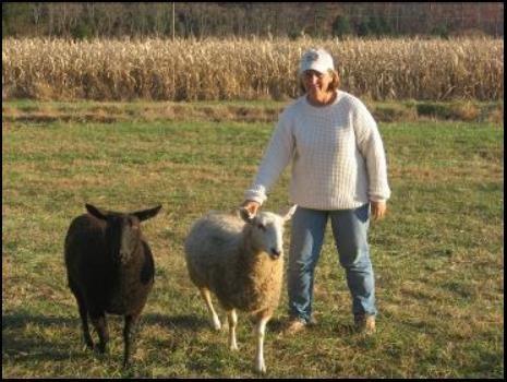 Greenfield farm ruckersville va for Greenfield farm