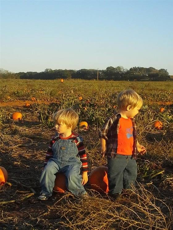 Grider farm pumpkin patch oklahoma haunted houses.