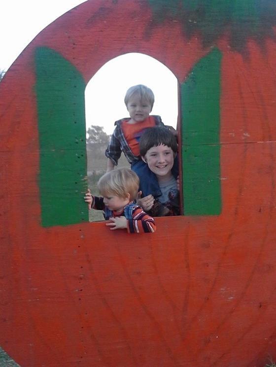 Grider farm pumpkin patch perkins, ok photos & videos.