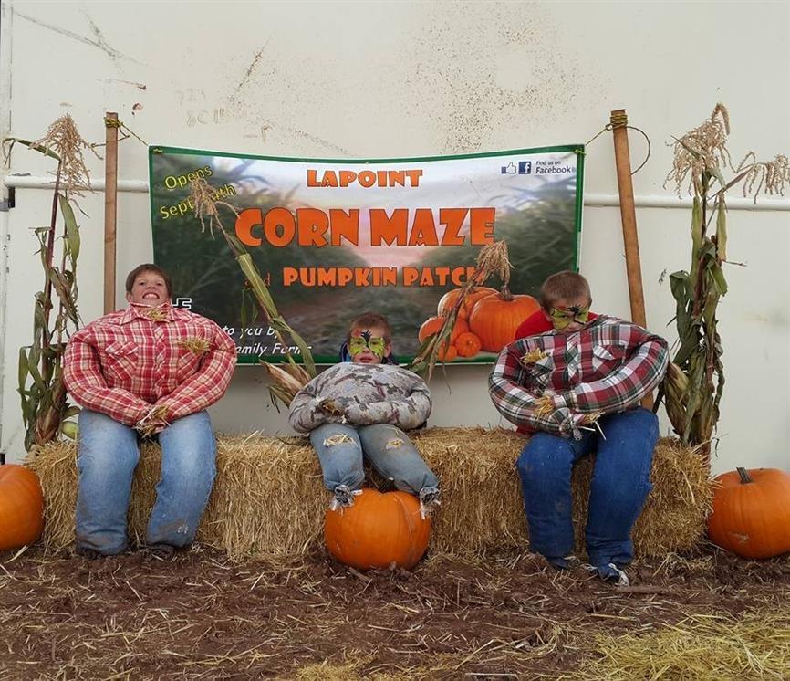 Lapoint corn maze pumpkin patch lapoint ut for Michaels craft store utah