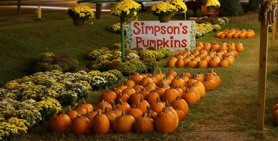 phil simpson pumpkins christmas trees at carmel commons has been serving south charlotte for over 30 years come on out and get your pumpkins on fall