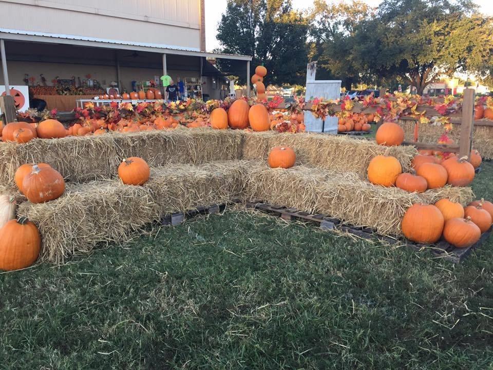 St. Luke's united methodist church pumpkin patch shreveport, la.