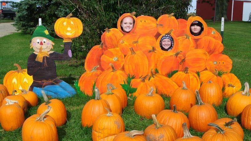 pumpkin farm dekalb il