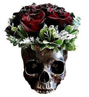 Skull Planter - Amazon.com.
